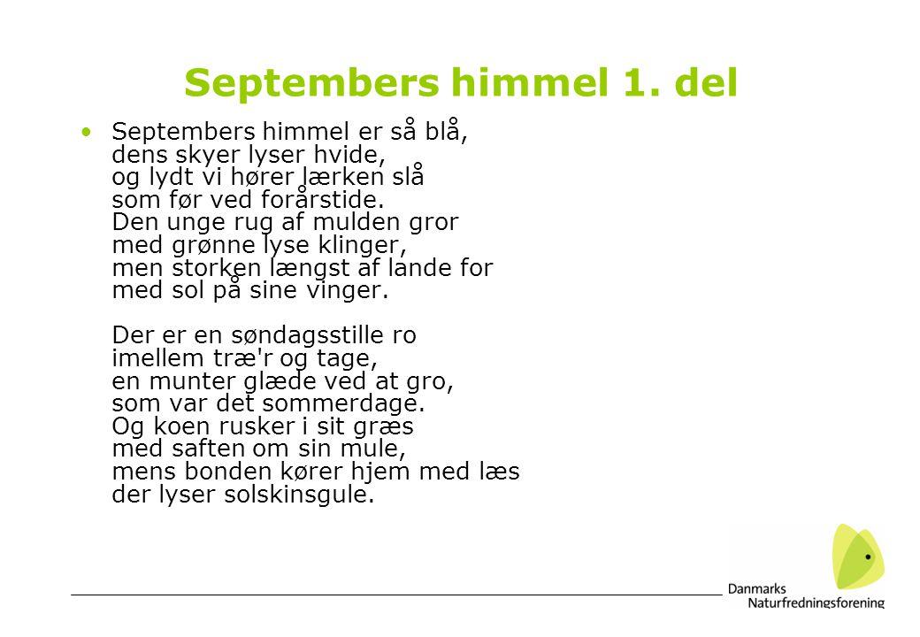 Septembers himmel 1.