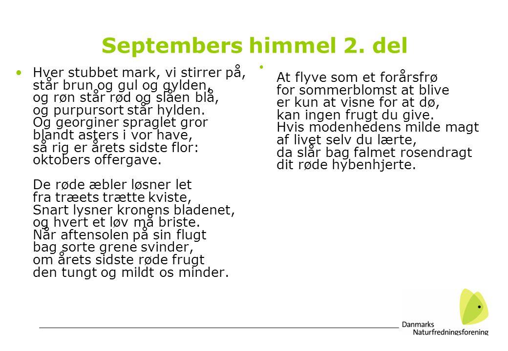 Septembers himmel 2.