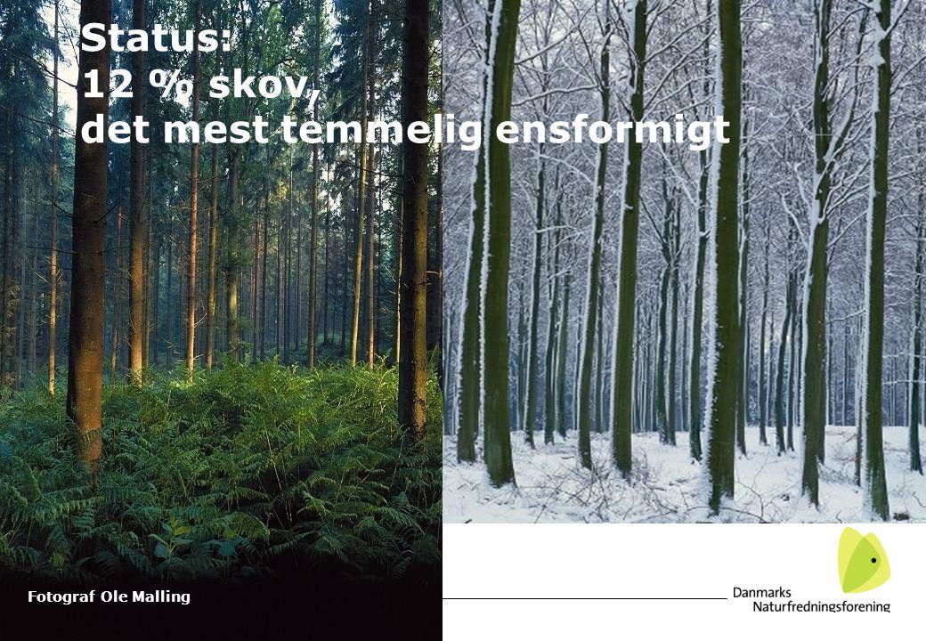 Fotograf Ole Malling Status: 12 % skov, det mest temmelig ensformigt