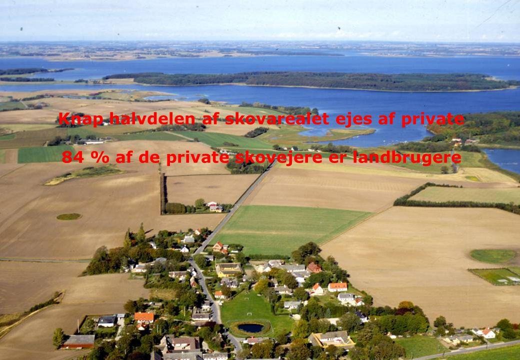 Knap halvdelen af skovarealet ejes af private 84 % af de private skovejere er landbrugere
