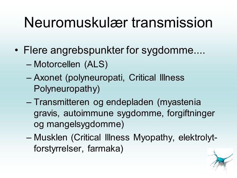 Neuromuskulær transmission •Flere angrebspunkter for sygdomme.... –Motorcellen (ALS) –Axonet (polyneuropati, Critical Illness Polyneuropathy) –Transmi