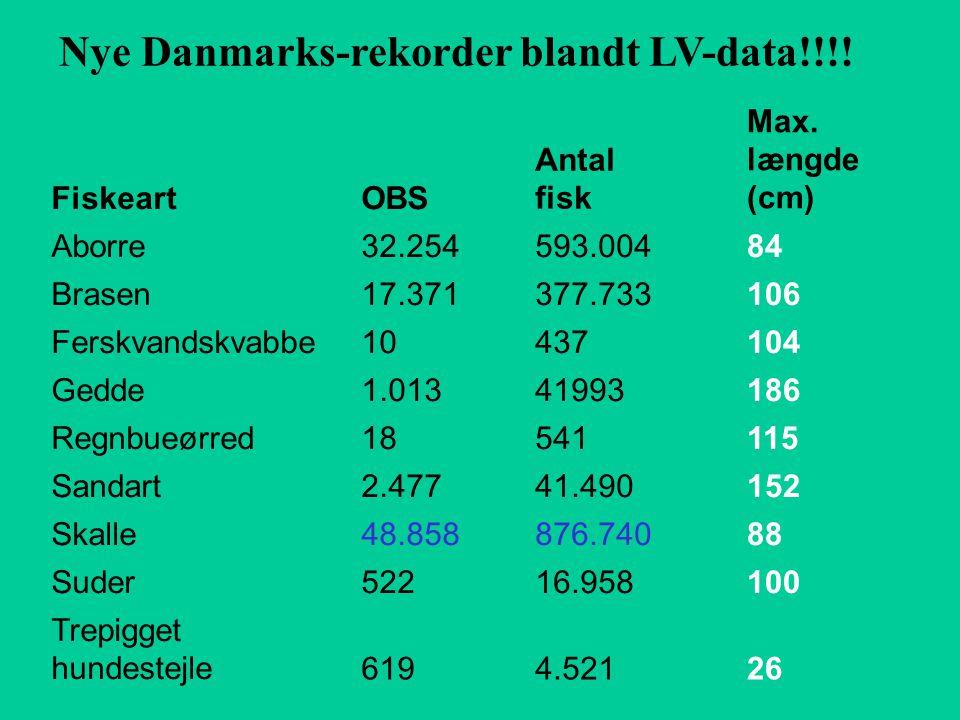 Nye Danmarks-rekorder blandt LV-data!!!. FiskeartOBS Antal fisk Max.