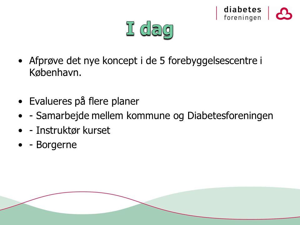 •Afprøve det nye koncept i de 5 forebyggelsescentre i København.