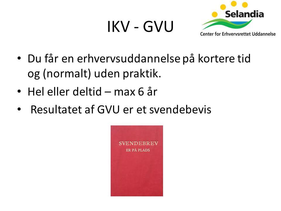 IKV - GVU • Du får en erhvervsuddannelse på kortere tid og (normalt) uden praktik.