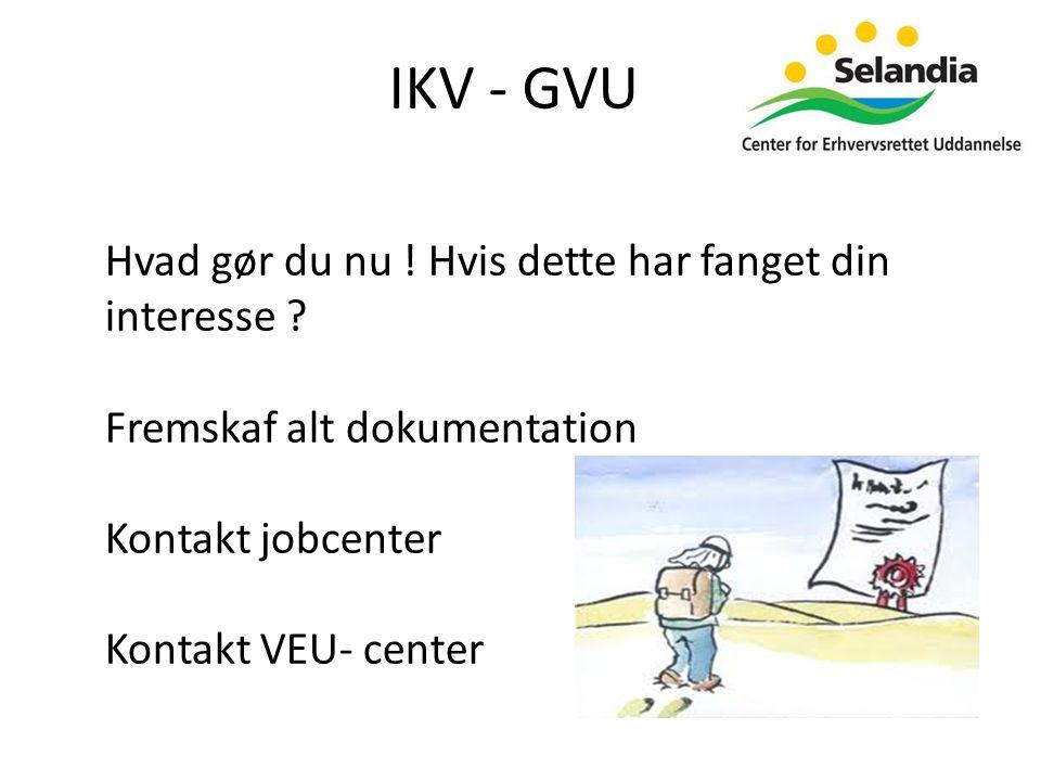IKV - GVU Hvad gør du nu . Hvis dette har fanget din interesse .
