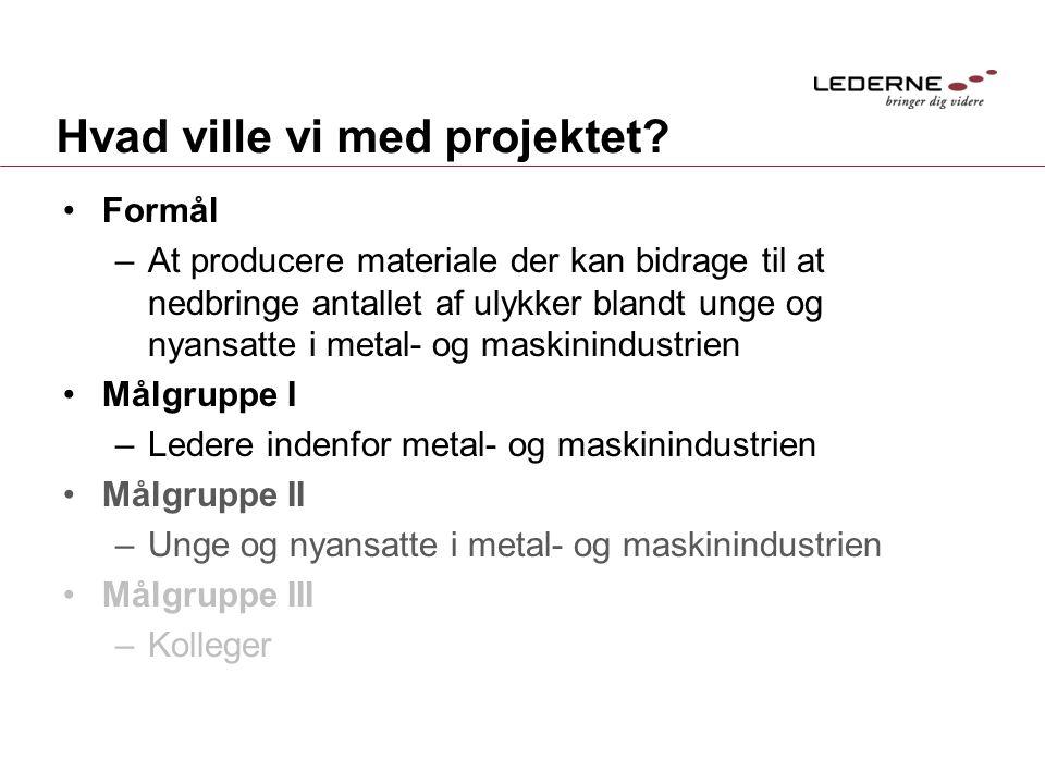 Hvad ville vi med projektet.