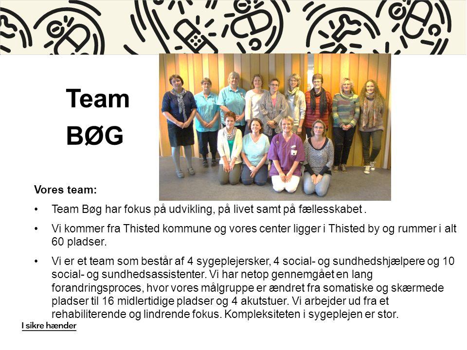 Team BØG Vores team: •Team Bøg har fokus på udvikling, på livet samt på fællesskabet.