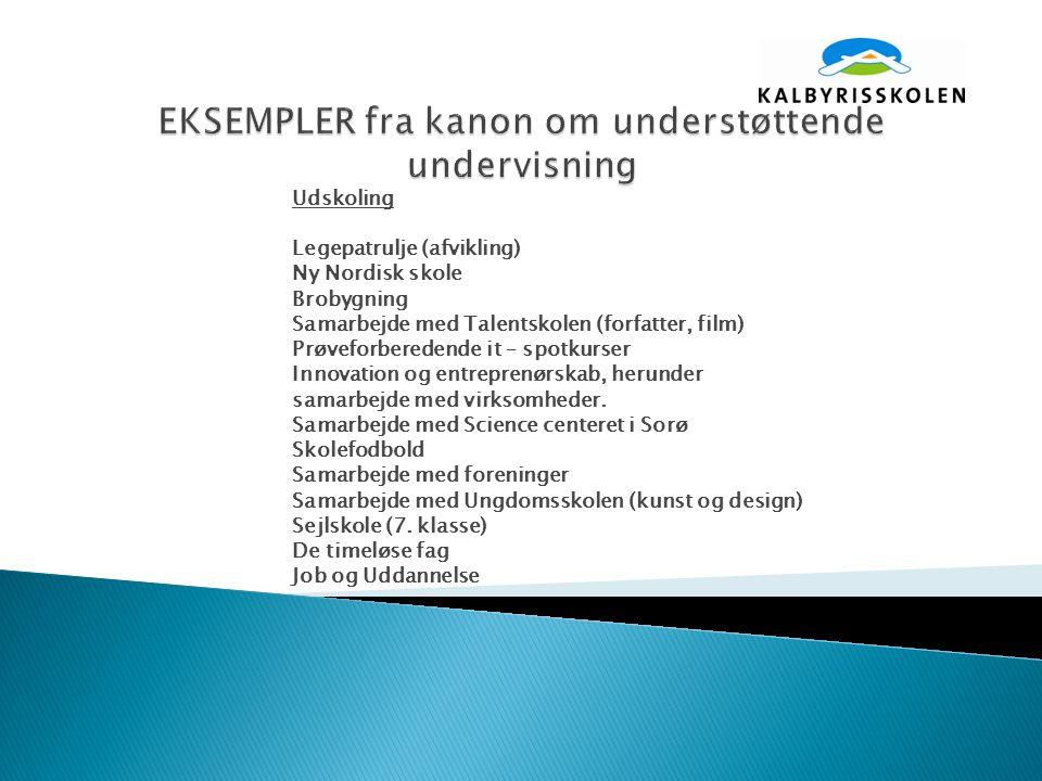 Udskoling Legepatrulje (afvikling) Ny Nordisk skole Brobygning Samarbejde med Talentskolen (forfatter, film) Prøveforberedende it – spotkurser Innovation og entreprenørskab, herunder samarbejde med virksomheder.