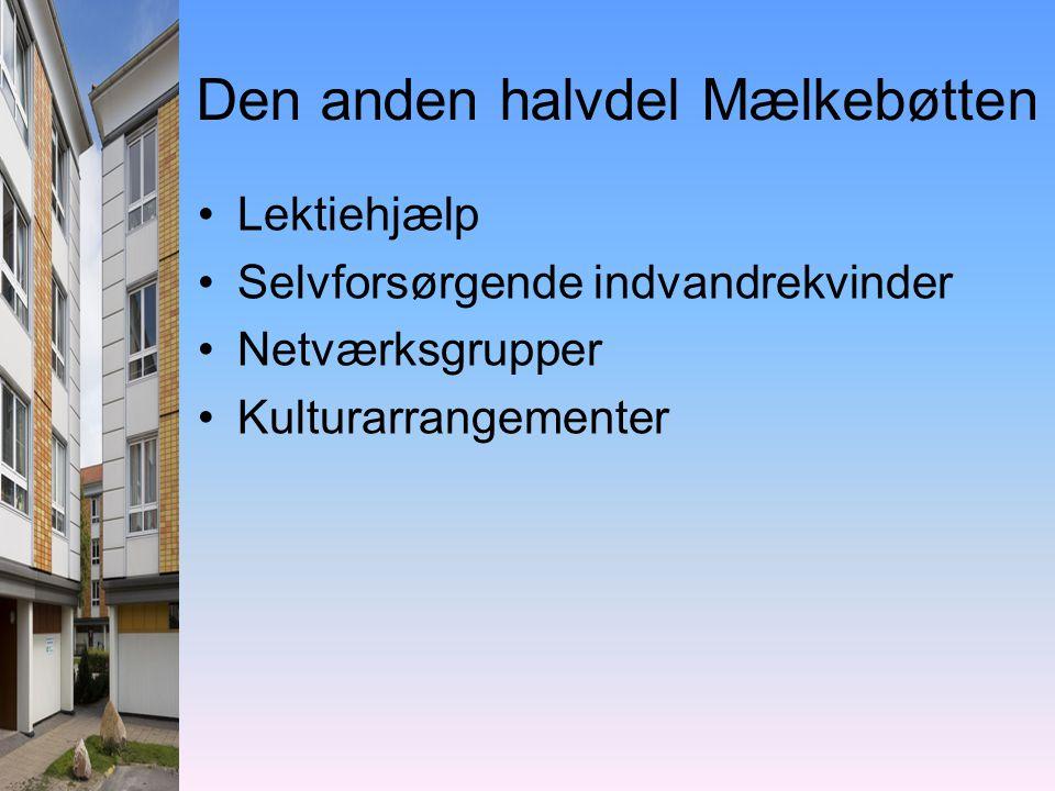 Den anden halvdel Mælkebøtten •Lektiehjælp •Selvforsørgende indvandrekvinder •Netværksgrupper •Kulturarrangementer