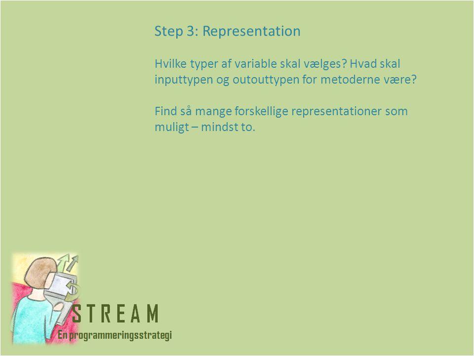 Step 3: Representation Hvilke typer af variable skal vælges.
