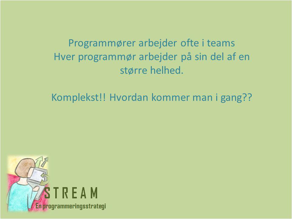 Programmører arbejder ofte i teams Hver programmør arbejder på sin del af en større helhed.