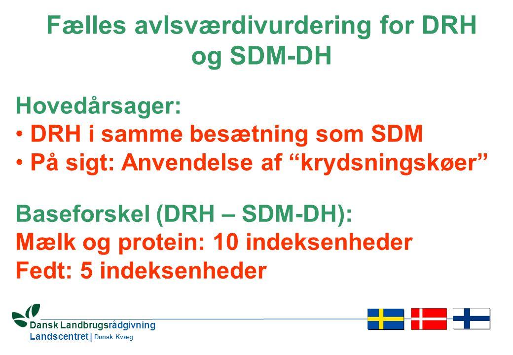 23 Dansk Landbrugsrådgivning Landscentret | Dansk Kvæg Fælles avlsværdivurdering for DRH og SDM-DH Hovedårsager: • DRH i samme besætning som SDM • På sigt: Anvendelse af krydsningskøer Baseforskel (DRH – SDM-DH): Mælk og protein: 10 indeksenheder Fedt: 5 indeksenheder