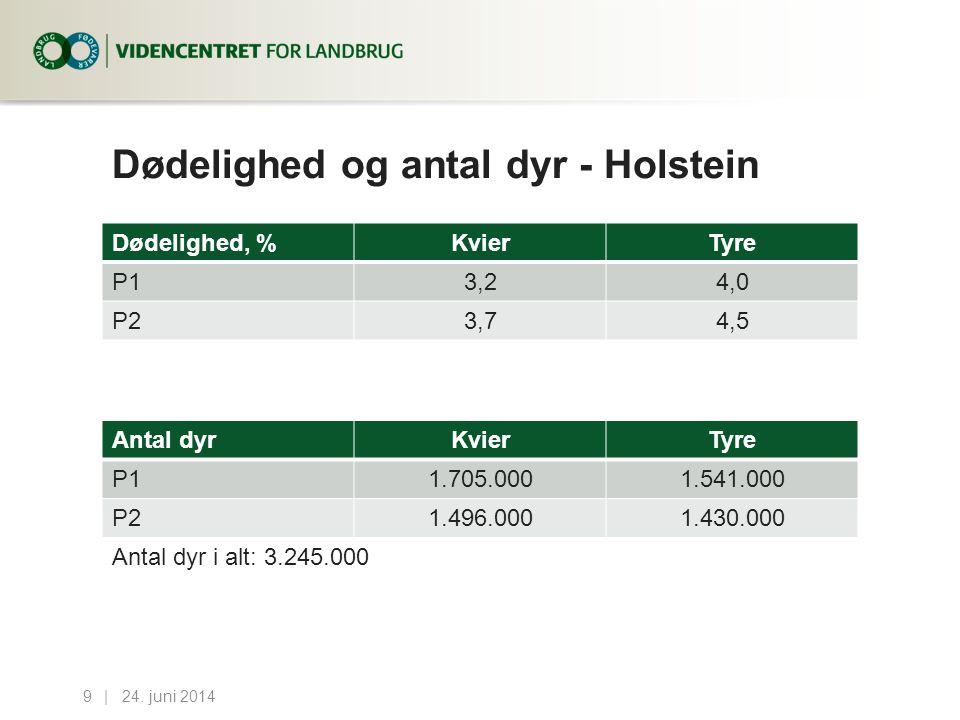 Dødelighed og antal dyr - Holstein Dødelighed, %KvierTyre P13,24,0 P23,74,5 24.