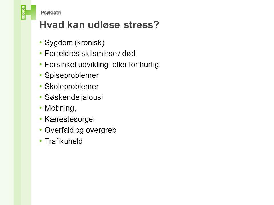 Hvad kan udløse stress.
