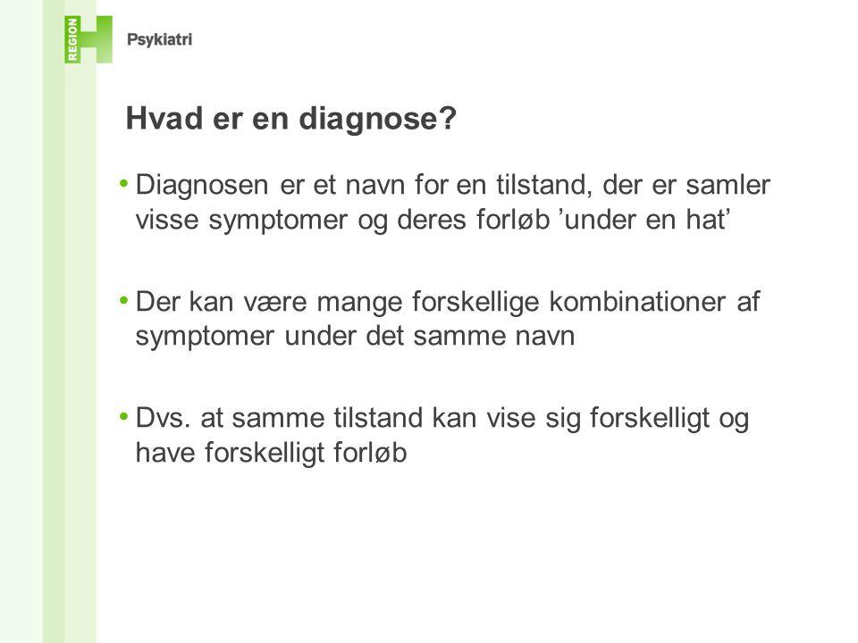 Hvad er en diagnose.