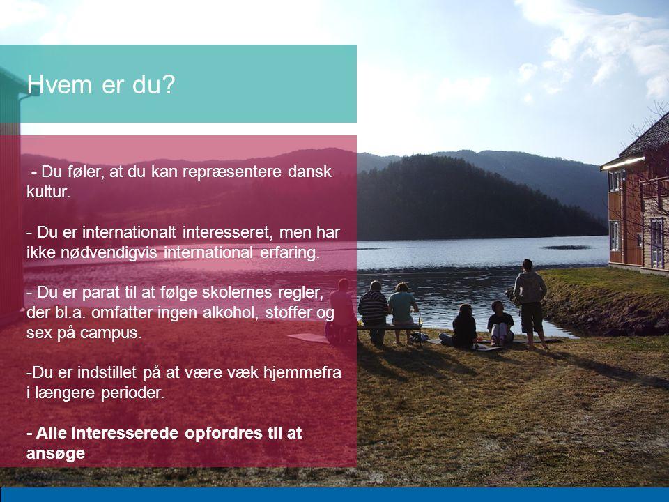- Du føler, at du kan repræsentere dansk kultur.