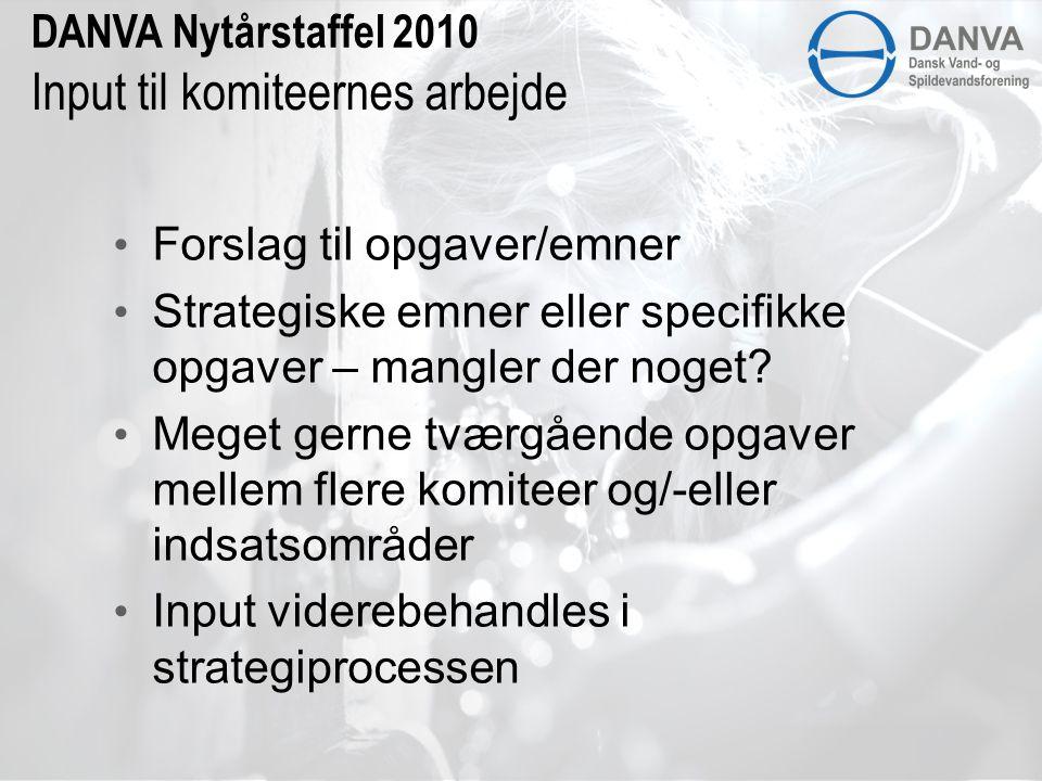 DANVA Nytårstaffel 2010 Input til komiteernes arbejde • Forslag til opgaver/emner • Strategiske emner eller specifikke opgaver – mangler der noget.