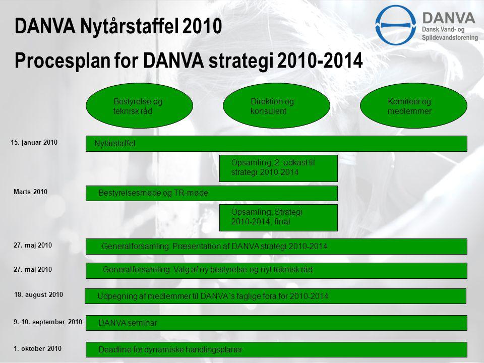Bestyrelse og teknisk råd Direktion og konsulent Komiteer og medlemmer Procesplan for DANVA strategi 2010-2014 15.