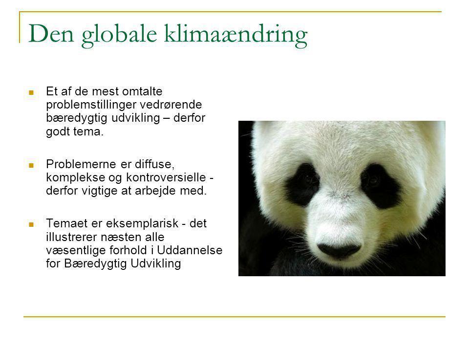 Den globale klimaændring  Et af de mest omtalte problemstillinger vedrørende bæredygtig udvikling – derfor godt tema.