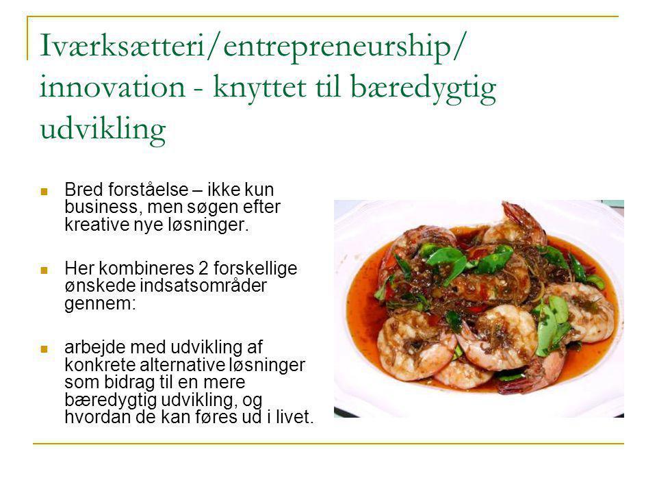 Iværksætteri/entrepreneurship/ innovation - knyttet til bæredygtig udvikling  Bred forståelse – ikke kun business, men søgen efter kreative nye løsninger.