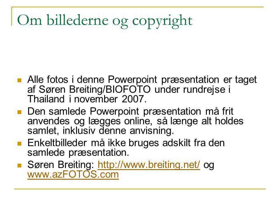 Om billederne og copyright  Alle fotos i denne Powerpoint præsentation er taget af Søren Breiting/BIOFOTO under rundrejse i Thailand i november 2007.