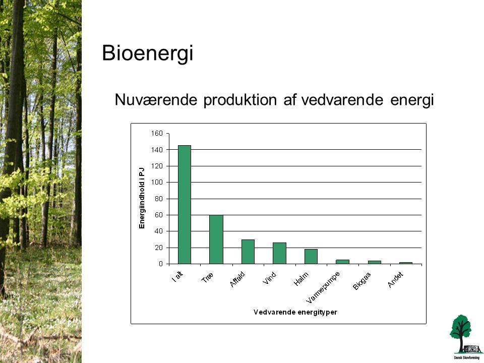 Bioenergi Nuværende produktion af vedvarende energi