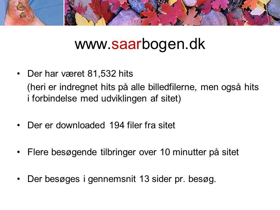 www.saarbogen.dk •Der har været 81,532 hits (heri er indregnet hits på alle billedfilerne, men også hits i forbindelse med udviklingen af sitet) •Der er downloaded 194 filer fra sitet •Flere besøgende tilbringer over 10 minutter på sitet •Der besøges i gennemsnit 13 sider pr.