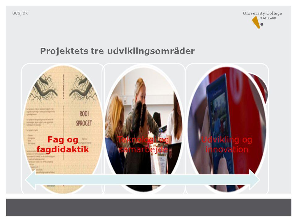 Teknologi og samarbejde Udvikling og innovation Fag og fagdidaktik Projektets tre udviklingsområder