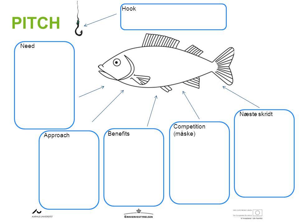 PITCH Hook Need Approach Benefits Competition (måske) Næste skridt