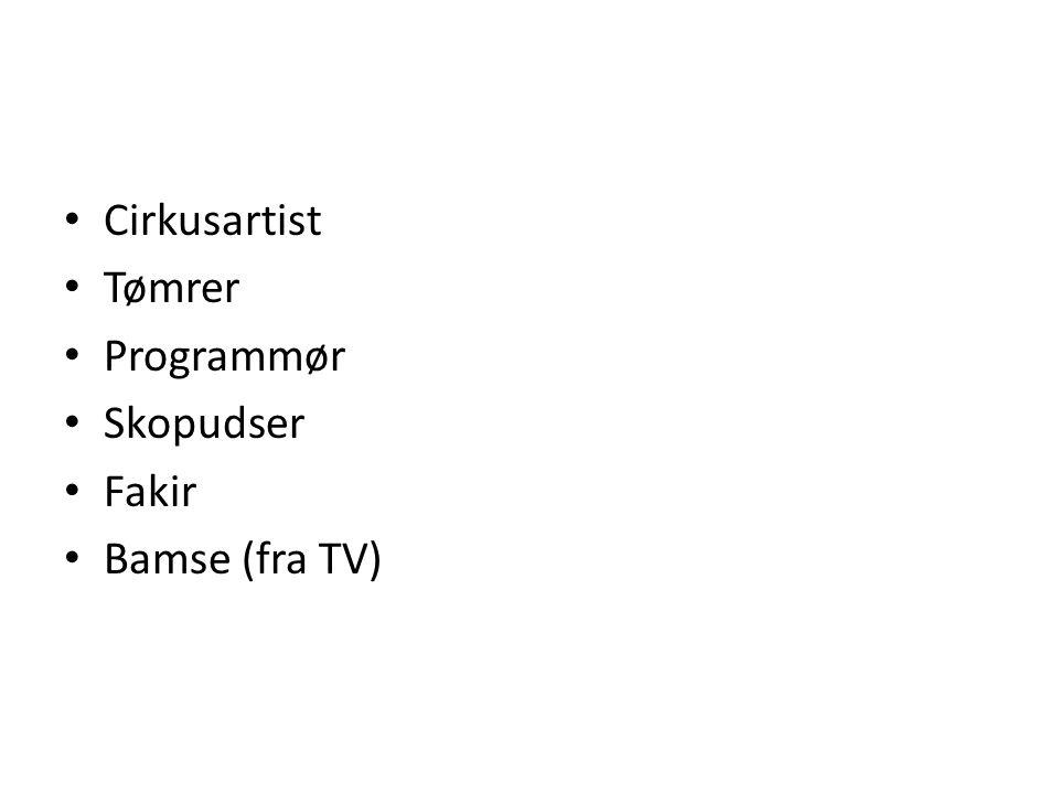 • Cirkusartist • Tømrer • Programmør • Skopudser • Fakir • Bamse (fra TV)