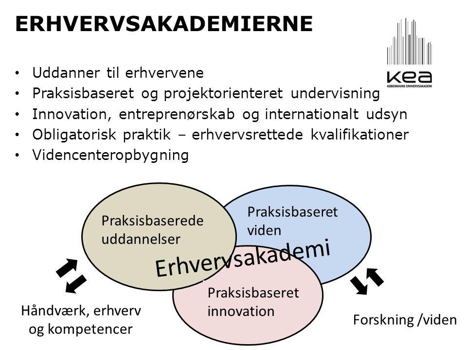ERHVERVSAKADEMIERNE • Uddanner til erhvervene • Praksisbaseret og projektorienteret undervisning • Innovation, entreprenørskab og internationalt udsyn • Obligatorisk praktik – erhvervsrettede kvalifikationer • Videncenteropbygning Praksisbaseret viden Praksisbaserede uddannelser Praksisbaseret innovation Erhvervsakademi Håndværk, erhverv og kompetencer Forskning /viden