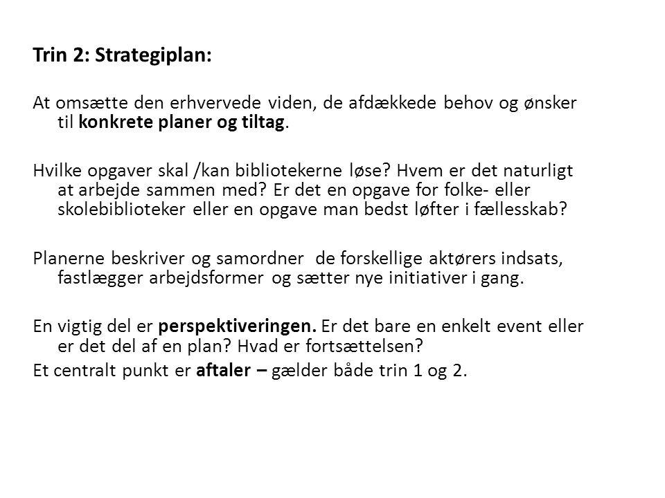 Trin 2: Strategiplan: At omsætte den erhvervede viden, de afdækkede behov og ønsker til konkrete planer og tiltag.