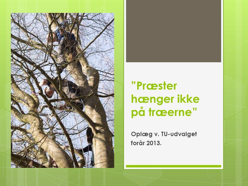 Præster hænger ikke på træerne Oplæg v. TU-udvalget forår 2013.