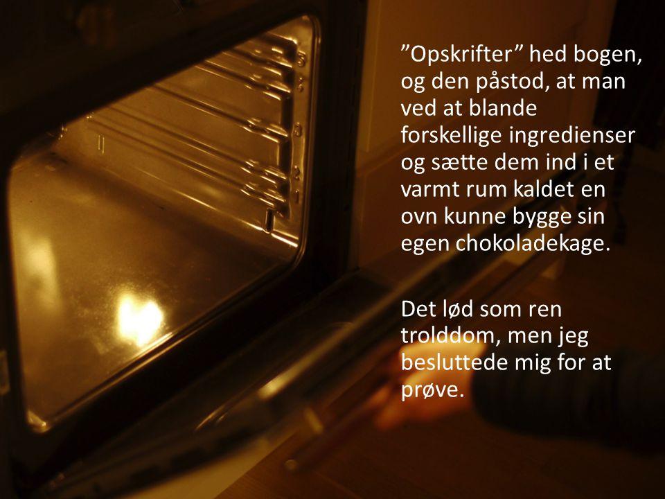 Opskrifter hed bogen, og den påstod, at man ved at blande forskellige ingredienser og sætte dem ind i et varmt rum kaldet en ovn kunne bygge sin egen chokoladekage.