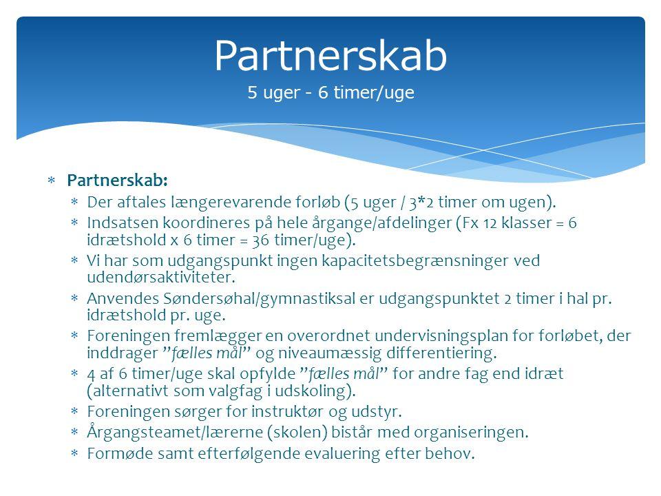  Partnerskab:  Der aftales længerevarende forløb (5 uger / 3*2 timer om ugen).
