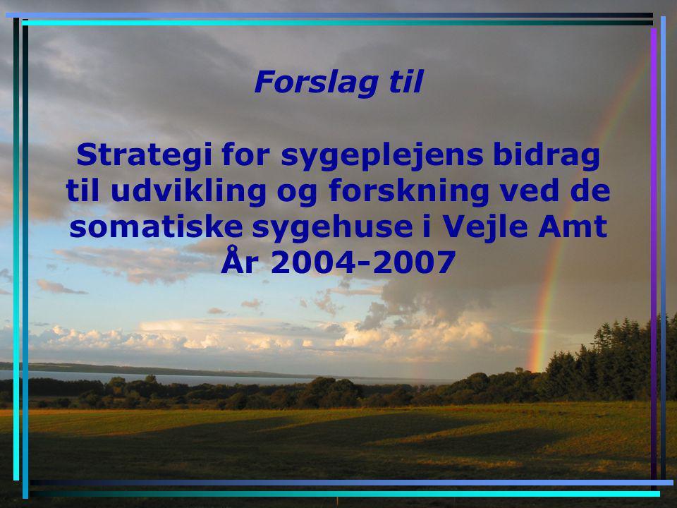 Forslag til Strategi for sygeplejens bidrag til udvikling og forskning ved de somatiske sygehuse i Vejle Amt År 2004-2007