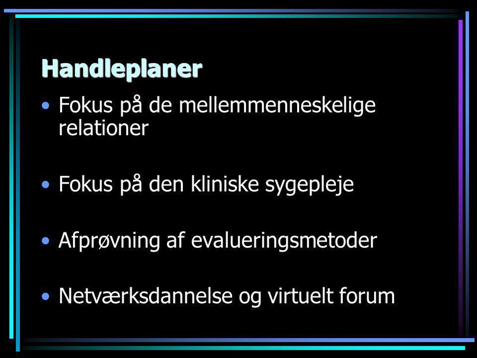 Handleplaner •Fokus på de mellemmenneskelige relationer •Fokus på den kliniske sygepleje •Afprøvning af evalueringsmetoder •Netværksdannelse og virtuelt forum