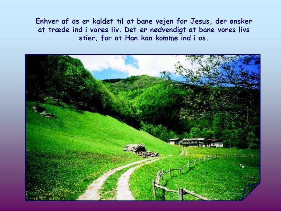Han er selv den vej, vi bør gå, for helt at virkeliggøre vores menneskelige kald, det vil sige at indgå i det fulde fællesskab med Gud.