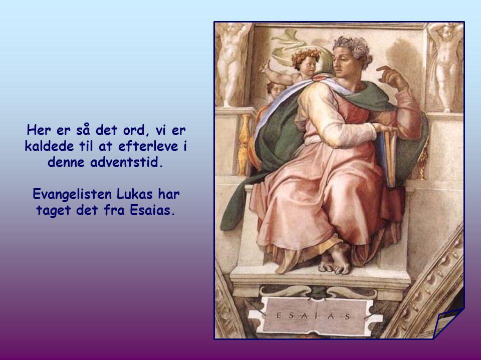 Ban Herrens vej, gør hans stier jævne! ( Luk 3,4)