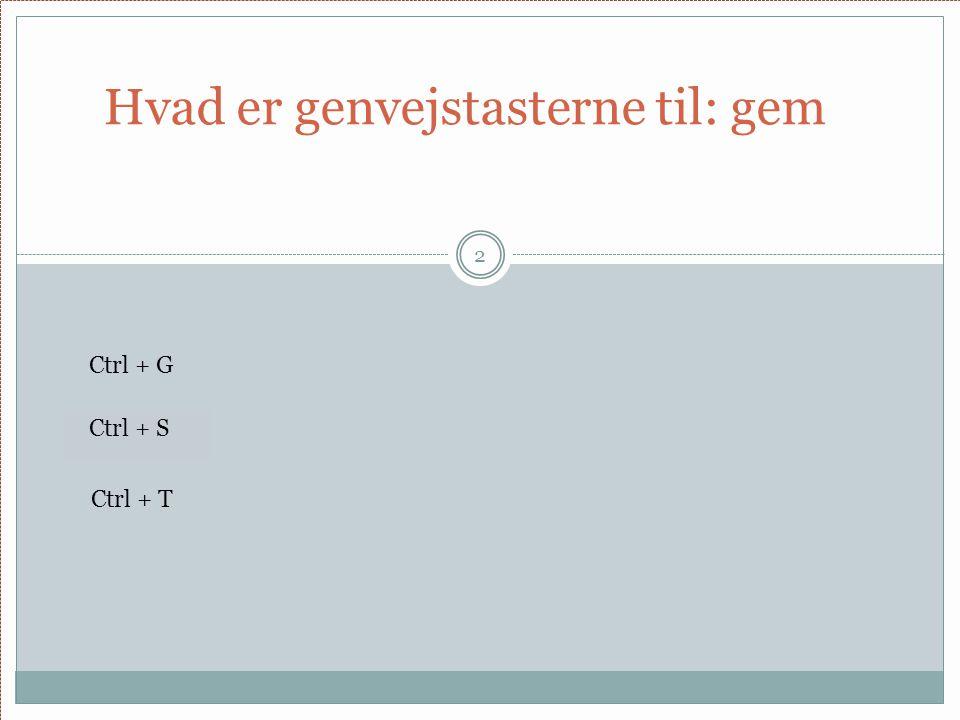 Hvad er genvejstasterne til: gem 2 Ctrl + G Ctrl + S Ctrl + T