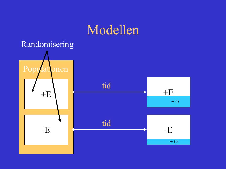 Modellen Populationen +E -E tid +E -E + O Randomisering