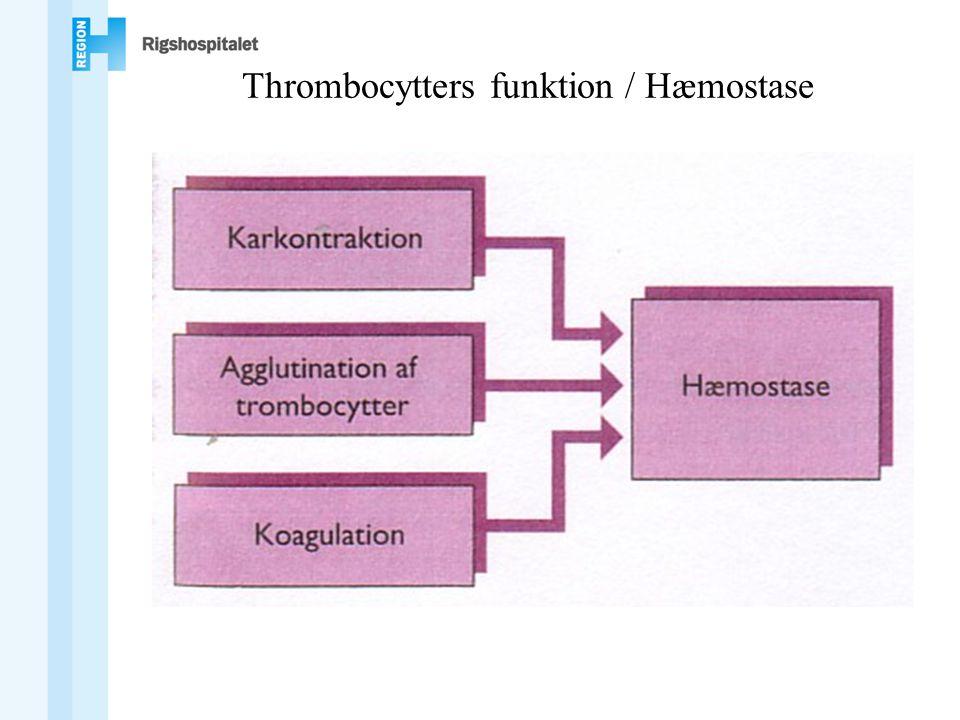 Thrombocytters funktion / Hæmostase