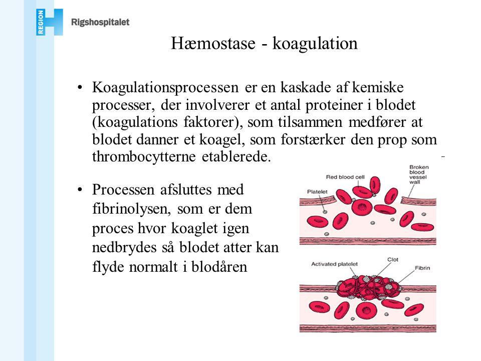 Hæmostase - koagulation •Koagulationsprocessen er en kaskade af kemiske processer, der involverer et antal proteiner i blodet (koagulations faktorer), som tilsammen medfører at blodet danner et koagel, som forstærker den prop som thrombocytterne etablerede.