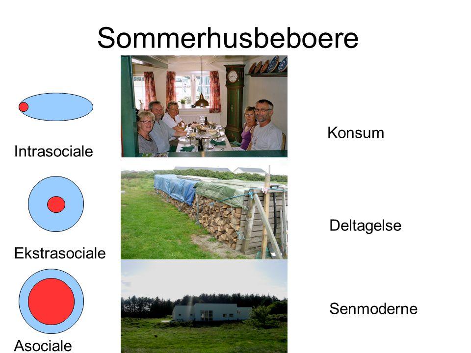 Asociale Senmoderne Sommerhusbeboere Intrasociale Konsum Ekstrasociale Deltagelse