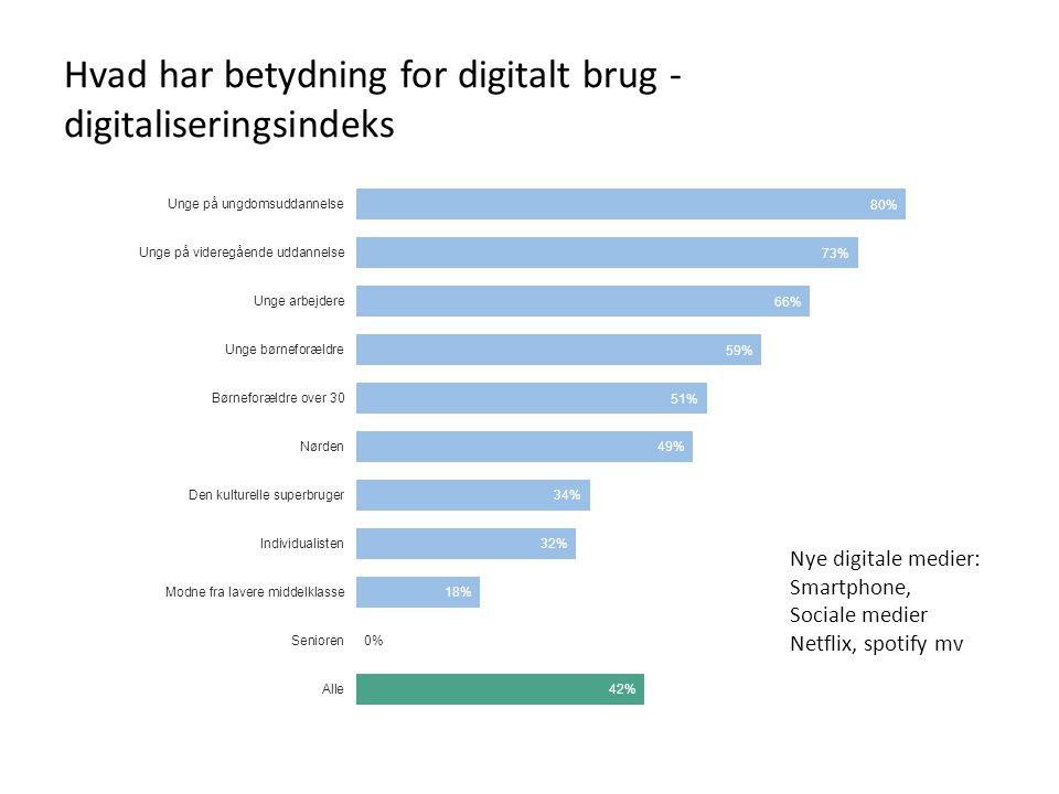Hvad har betydning for digitalt brug - digitaliseringsindeks