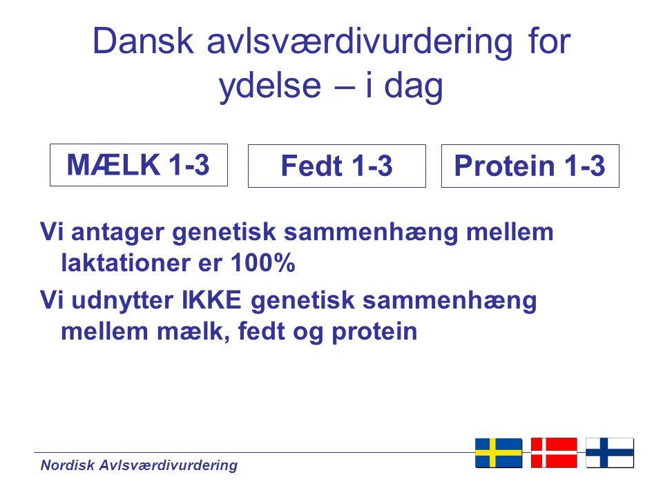 Nordisk Avlsværdivurdering Dansk avlsværdivurdering for ydelse – i dag Vi antager genetisk sammenhæng mellem laktationer er 100% Vi udnytter IKKE genetisk sammenhæng mellem mælk, fedt og protein Fedt 1-3 MÆLK 1-3 Protein 1-3