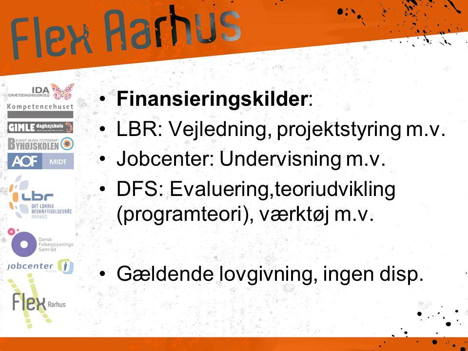 •Finansieringskilder: •LBR: Vejledning, projektstyring m.v.