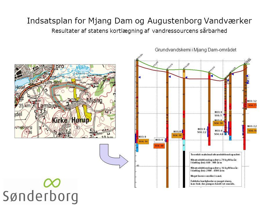 Indsatsplan for Mjang Dam og Augustenborg Vandværker Resultater af statens kortlægning af vandressourcens sårbarhed Grundvandskemi i Mjang Dam-området