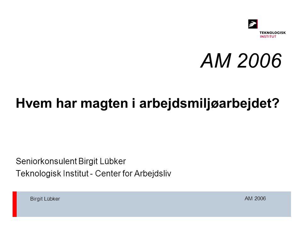 AM 2006 Birgit Lübker AM 2006 Hvem har magten i arbejdsmiljøarbejdet.