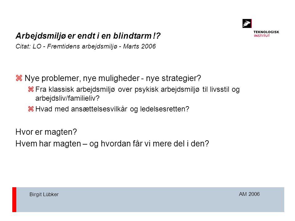 AM 2006 Birgit Lübker Arbejdsmiljø er endt i en blindtarm !.